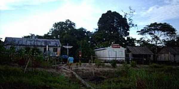 Carauarí-AM-Área rural da cidade-Foto:ibueno