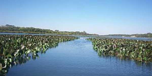 Formosa-GO-Lagoa Feia-Foto:charlen