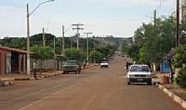 Gameleira de Goiás - Avenida das Palmeiras-Foto:fernando.demartini