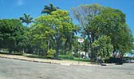 Goian�sia - Paisagem