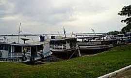 Carvoeiro - Vila de Carvoeiro no Rio Negro-Foto:flickr