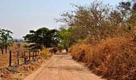 Inhumas - Inhumas-GO-Linda estrada na área rural-Foto:Arolldo Costa Oliveira