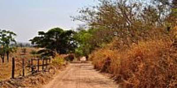 Inhumas-GO-Linda estrada na área rural-Foto:Arolldo Costa Oliveira