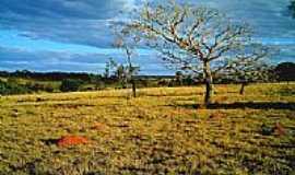 Israelândia - Cerrado de Israelândia-Foto postadada por:iane1ferreira