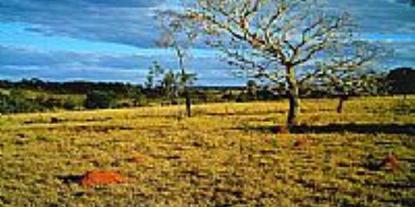 Cerrado de Israelândia-Foto postadada por:iane1ferreira