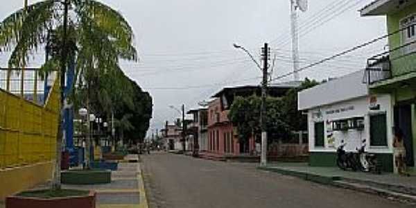 Imagens da cidade de Codajás - AM - Terra do Açaí