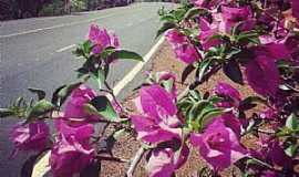 Jataí - Alameda das Primaveras