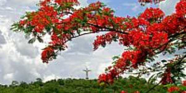Jataí-GO-Vista do Cristo-Foto:Edismair