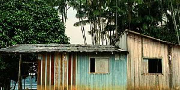 Cucuí-AM-Casas ribeirinhas-Foto:maloup