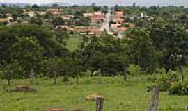 Novo Brasil - Novo Brasil por rafaelmarcola