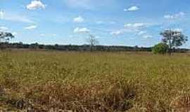 Novo Planalto - Fazenda no Município de Novo Planalto-Foto:mfrural.