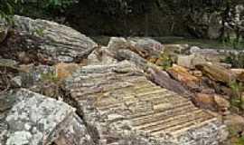 Pirenópolis - Pirenópolis-GO-Fósseis de árvore primitiva,margem do Ribeirão Santa Maria-Foto:Pe. Edinisio Pereira…