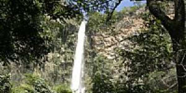 Cachoeira local