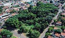 Rio Verde - Área de preservação no centro de Rio Verde-GO-Foto:Tizzo Neto