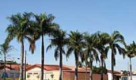 São Miguel do Passa Quatro - Av. das Palmeiras por solon castro