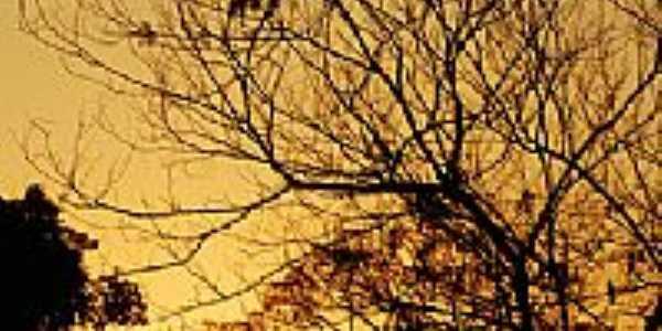 Pôr do Sol-Foto:Joventino Neto
