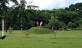 Urua�u - Parque das Araras foto por dioceliofreitas