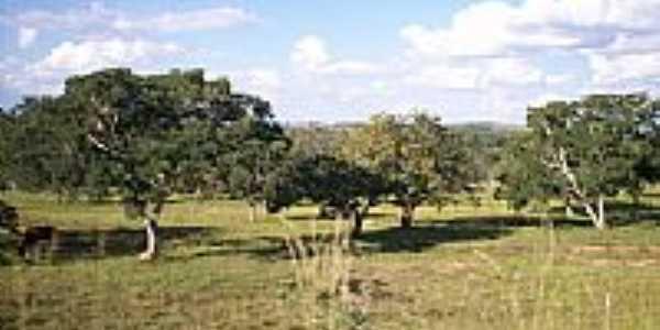Área rural-Foto:José Eustáquio Ribei…