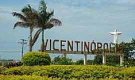 Vicentinópolis - Trevo de entrada de Vicentinópolis-Foto:luismar da silva Pra…