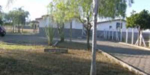 Jardim Frente Hospital Municipal, Por Altino Dias Reis