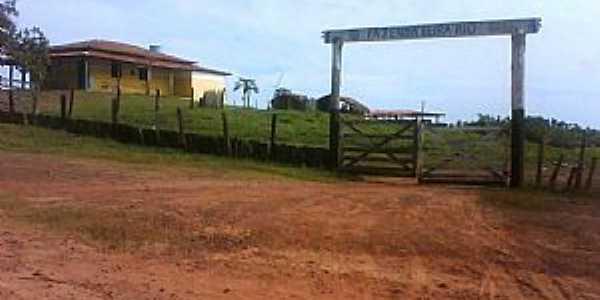 Altamira do Maranhão-MA-Fazenda Beira Rio-Foto:Nivas Larsan