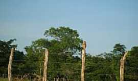 Barão de Grajaú - Localidade de Caboré em Barão de Grajaú-MA-Foto:PEDRO PAULO