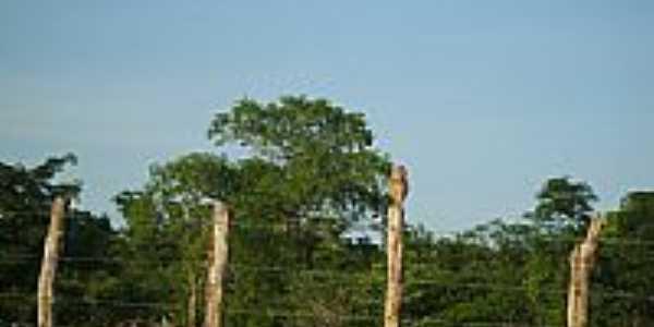 Localidade de Caboré em Barão de Grajaú-MA-Foto:PEDRO PAULO