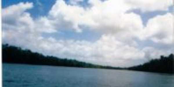 Rio Serrano. Floresta , Por alex andre