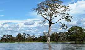Manaquiri - Manaquiri-AM-Rio Amazonas-Foto:Ricardo Hossoe