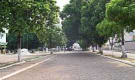 Carolina - Carolina-MA-Mangueiras Centenárias nas ruas da cidade-Foto:Nando Cunha