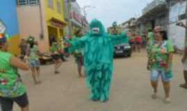 Carutapera - Carnaval em Carutapera-bloco dos Bichos Folharais, Por Alda Magalh�es