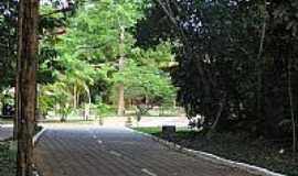 Manaus - Manaus-AM-Parque do Mindu-Foto:Paulo Targino Moreir…