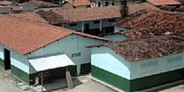 Colégio-Foto:moleculabrasil