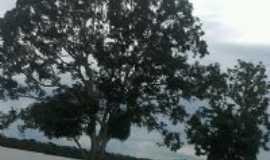 Maraã - Lago Orla Maraã, Por paulo gerje f.fonseca