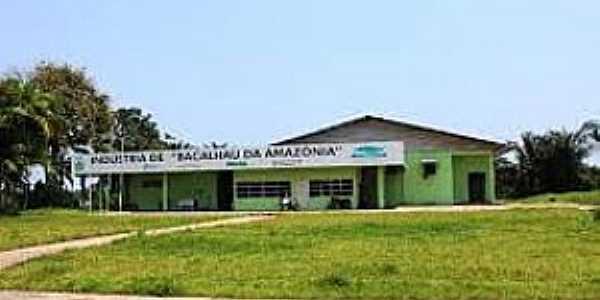 Maraã-AM-Indústria salgadeira de Bacalhau-Foto:jamylymacedo.wordpress.com