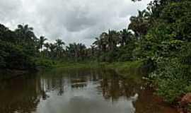 Graça Aranha - Graça Aranha-MA-Açude no Povoado Creoli Sinhá-Foto:jurandir borges carvalho