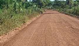 Graça Aranha - Graça Aranha-MA-Estrada de acesso à cidade-Foto:jurandir borges carvalho