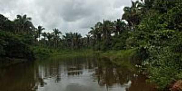 Graça Aranha-MA-Açude no Povoado Creoli Sinhá-Foto:jurandir borges carvalho
