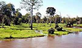 Maués - Maués-AM-Época de cheia no Rio Maués-Açu-Foto:aventurasamazonia.blogspot.com