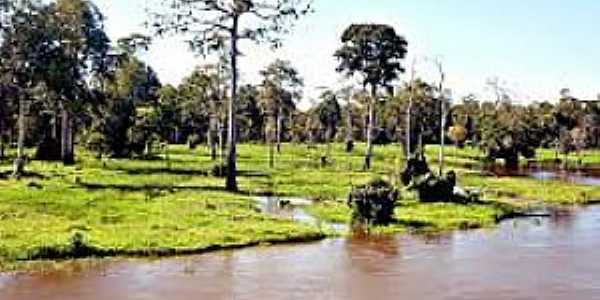 Maués-AM-Época de cheia no Rio Maués-Açu-Foto:aventurasamazonia.blogspot.com