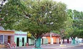 Matinha - Av.Her�clito Amaral da Silva em Matinha-Foto:Giano Cutrim