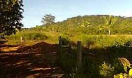 Nova Colinas - Área rural-Foto:ariedson