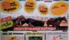 Paraibano - a maior vaqueijada do maranhao, Por jakson dos reis sousa