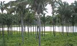 Paraibano - Barragem do Balseiro