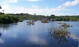 Novo Airão - Novo Airão-AM-Navegando em rio na Selva Amazônica-Foto:silmarq