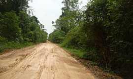 Novo Aripuanã - Novo Aripuanã-AM-Rodovia AM-174-Foto:abreujp