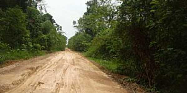 Novo Aripuanã-AM-Rodovia AM-174-Foto:abreujp