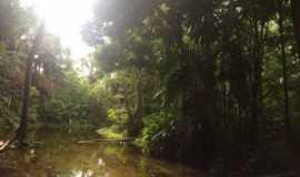 Porto Rico do Maranhão - Rio do Munduri em Rabeca, Por Greicy Kelly