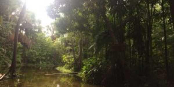 Rio do Munduri em Rabeca, Por Greicy Kelly