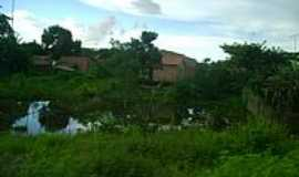 Rosário - Rosário-MA-Córrego em Rosário-Foto:walterantonio
